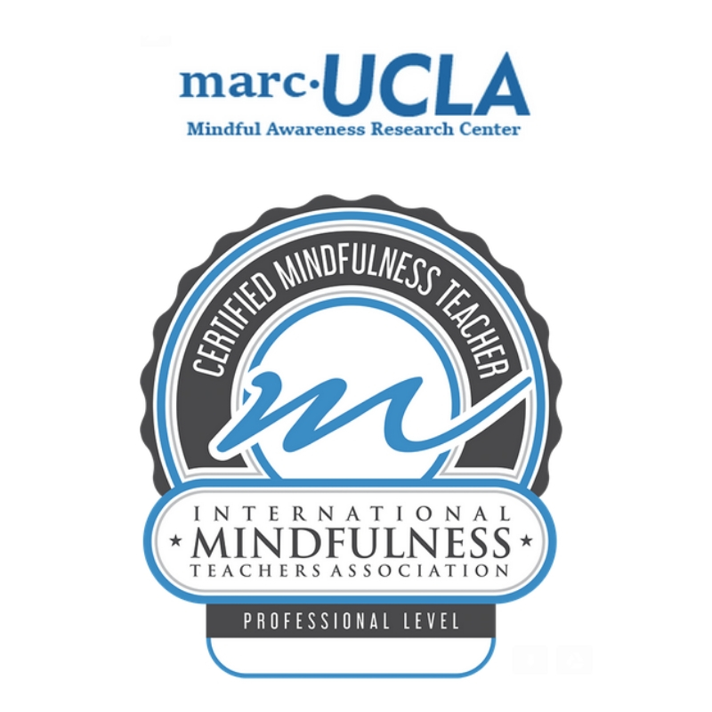 Ucla Mindfulness Awareness Program